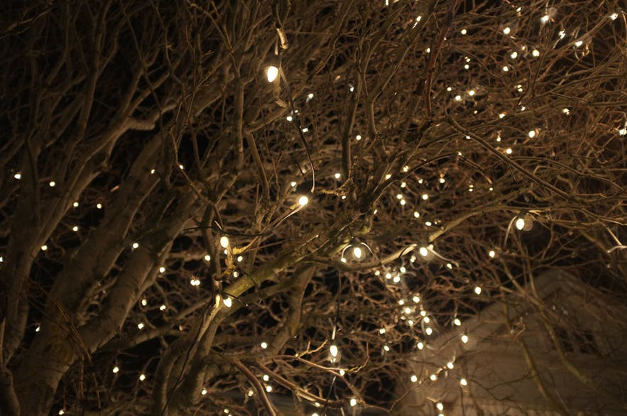 Iceland S Christmas Trees Of Light Guide To Iceland