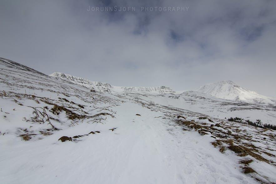 Mount Esja Hiking And Outdoor Area