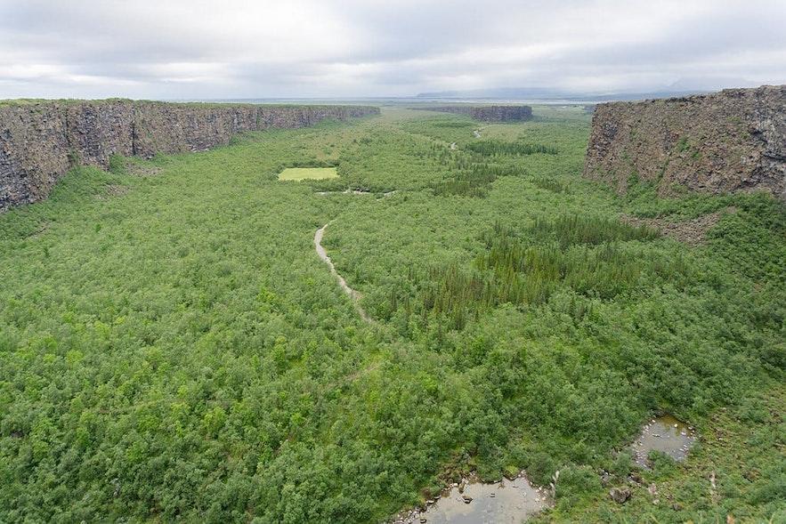 Zielony kanion Asbyrgi na północy Islandii.