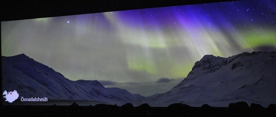 At Aurora Reykjavík