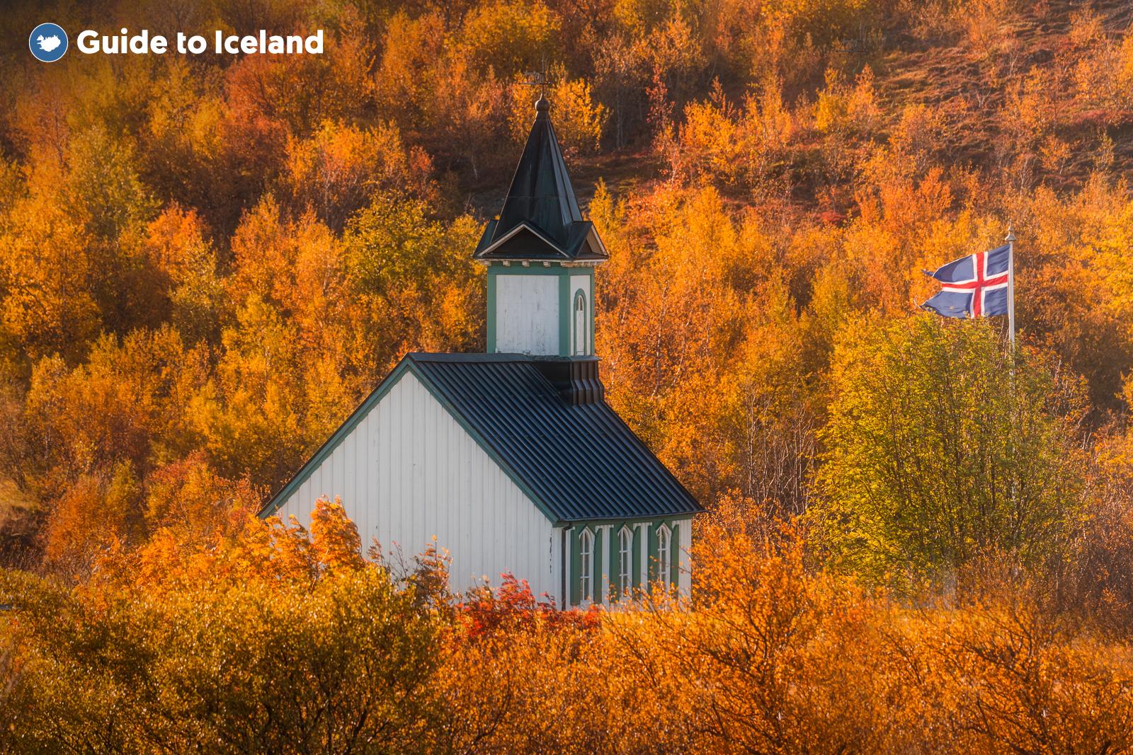 Ta en rundtur där du kör själv runt Gyllene cirkeln så kan du tillbringa så mycket tid på var och en av dessa platser som du vill. Om du exempelvis är intresserad av historia och geologi kanske du vill vara längre i Þingvellir nationalpark.