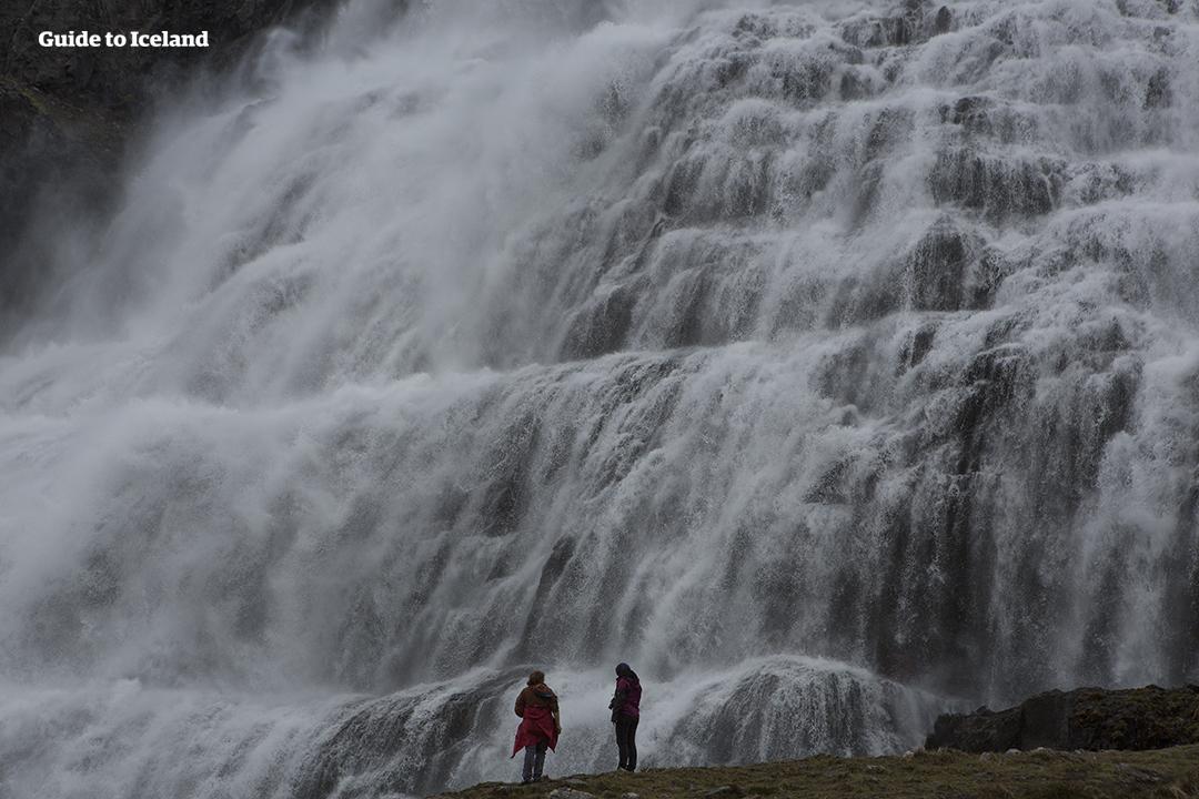 À l'approche de la cascade de Dynjandi, dans la région des fjords de l'Ouest, vous êtes accueilli par le grondement sourd de cette majestueuse chute d'eau.