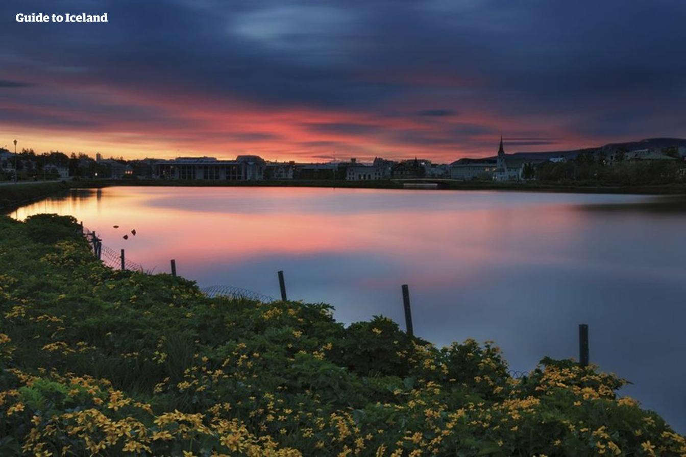 L'étang de Tjörnin sublimé par le soleil de minuit et les fleurs sauvages qui ornent ses berges.