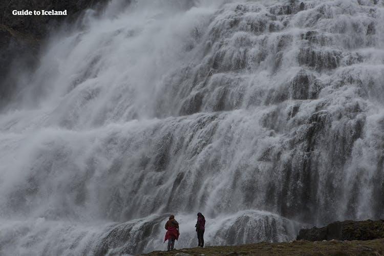 Bereise die Westfjorde Islands und besichtige Dynjandi, einen der eindrucksvollsten Wasserfälle des Landes.