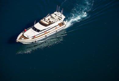 Whale Watching Luxury Yacht Cruise