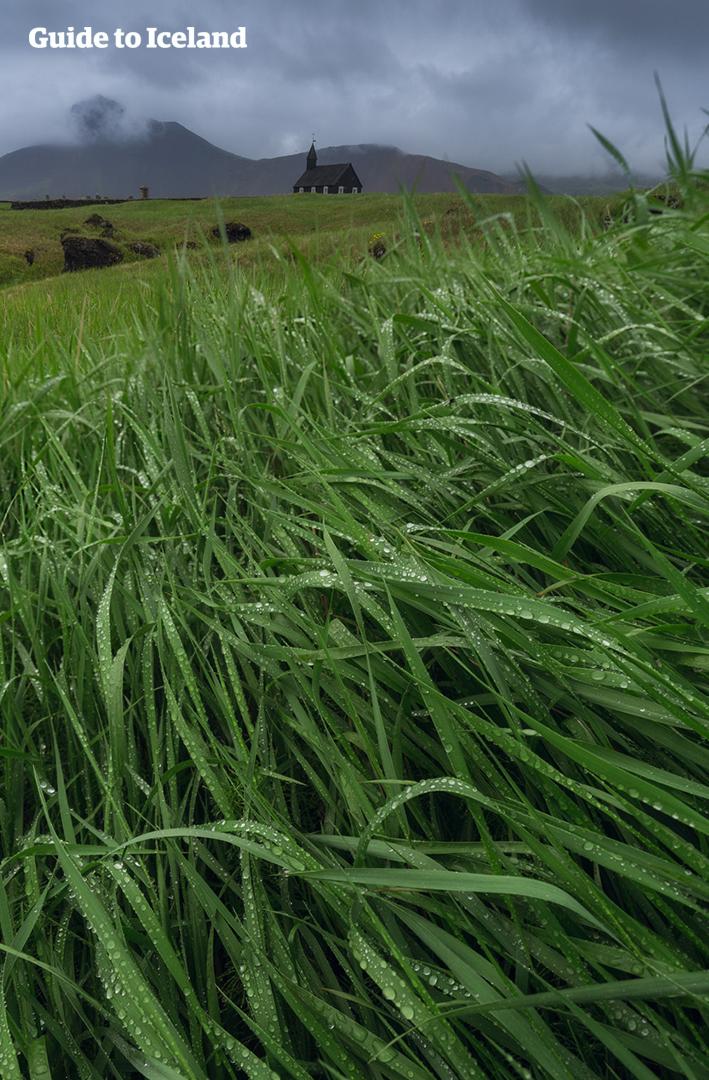 Van een grillig gevormde bergtop op het schiereiland Snæfellsnes loopt een lieflijke stroom door een veld van mos.