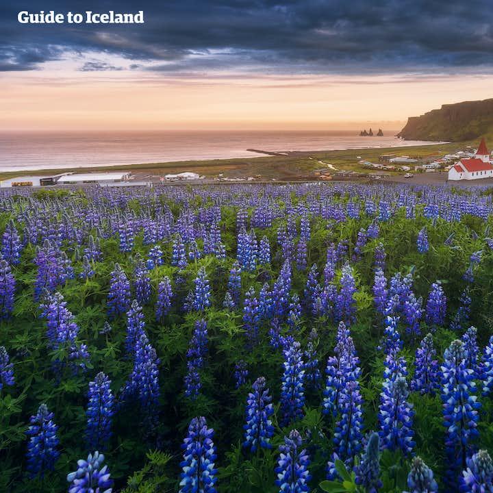 8-dages sommerpakke   Islands bedste attraktioner