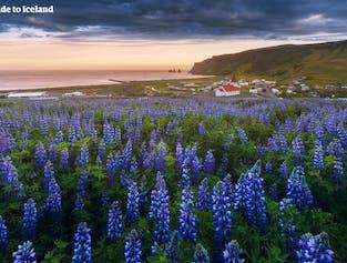 8-tägiges Sommer-Reisepaket   Die besten Attraktionen Islands