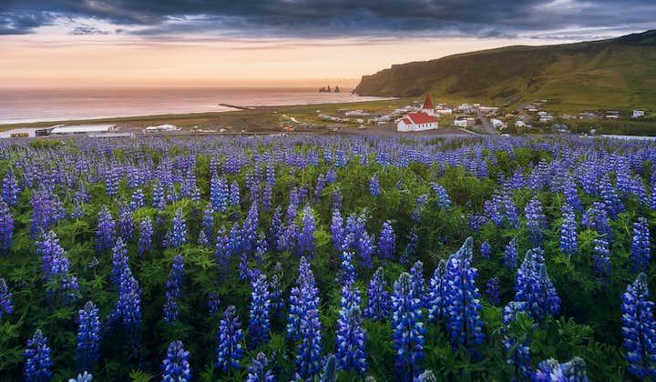 サマーパッケージ8日間   アイスランド観光のベストスポット