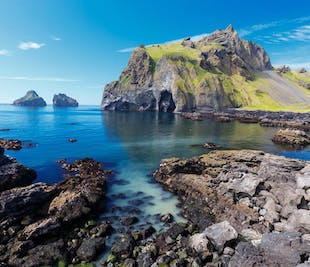 Day Tour to the Westman Islands