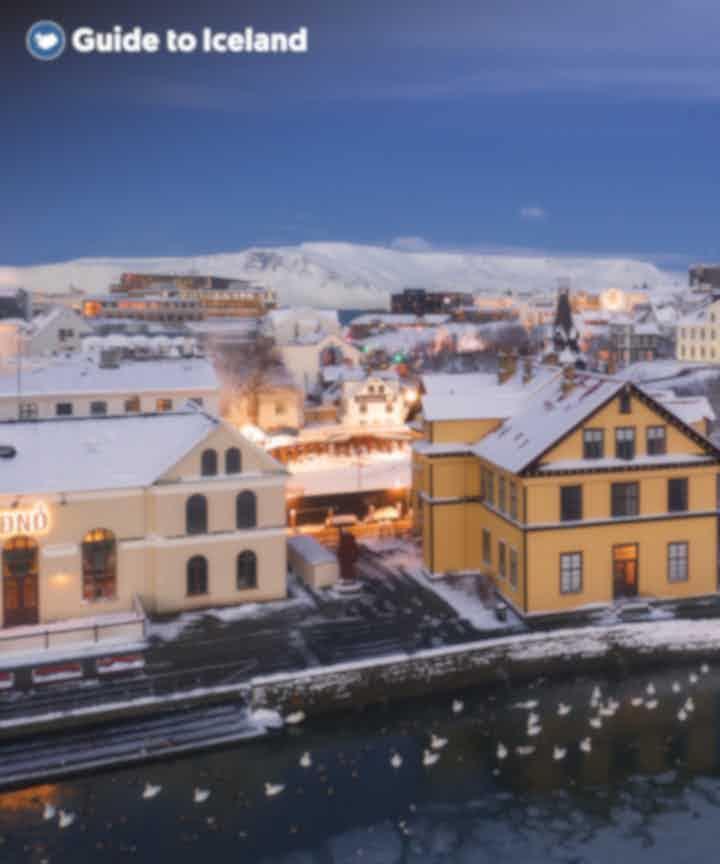 Excursies in en rondom Reykjavík