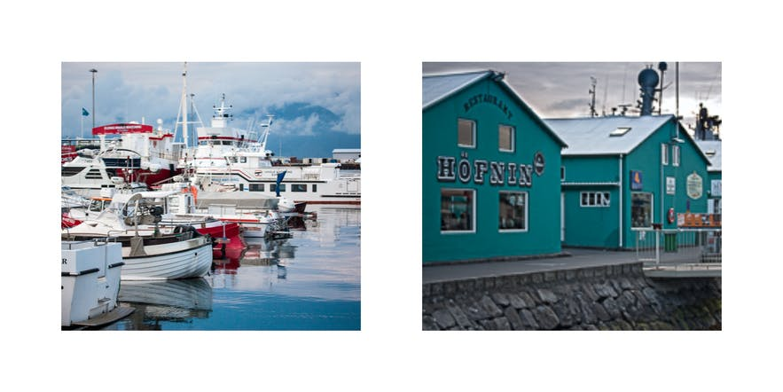 the harbour Reykjavík