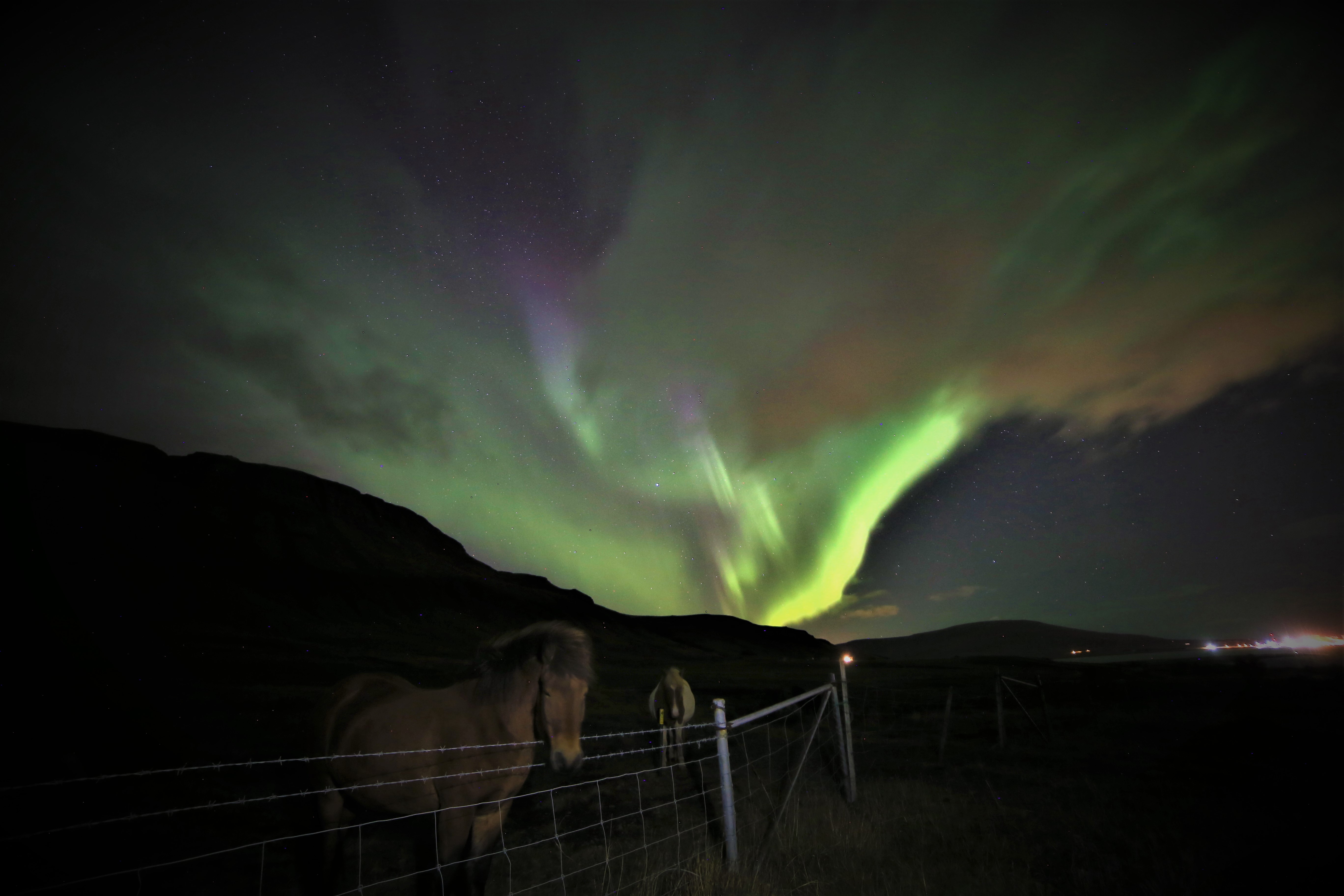 Guided 2 Hour Northern Lights ATV Tour with Transfer from Reykjavik