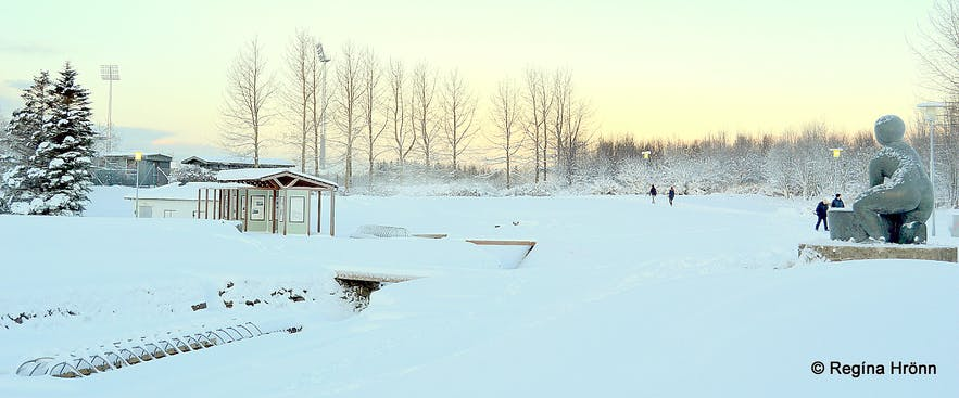 Beautiful white Snow in Laugardalur Valley in Reykjavík