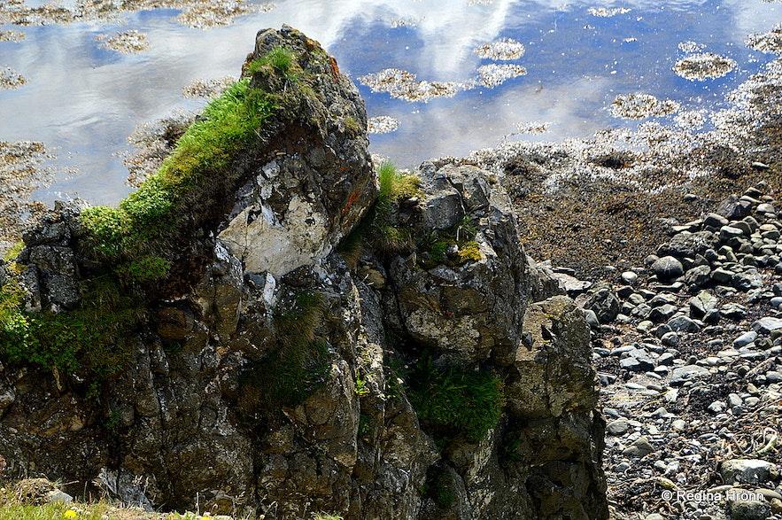 Bakkahöfði cape North-Iceland