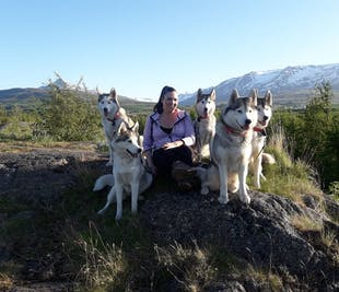 Hiking with Husky Dogs in Akureyri