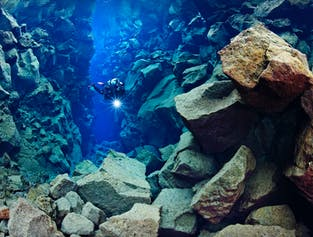 Silfra Diving Experience & Golden Circle Day Tour