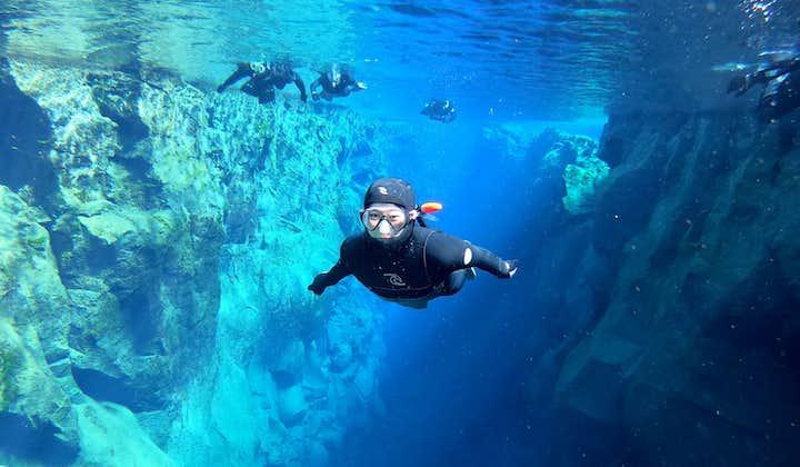 Снорклинг в Сильфре в «мокром» гидрокостюме | Бесплатное подводное фото