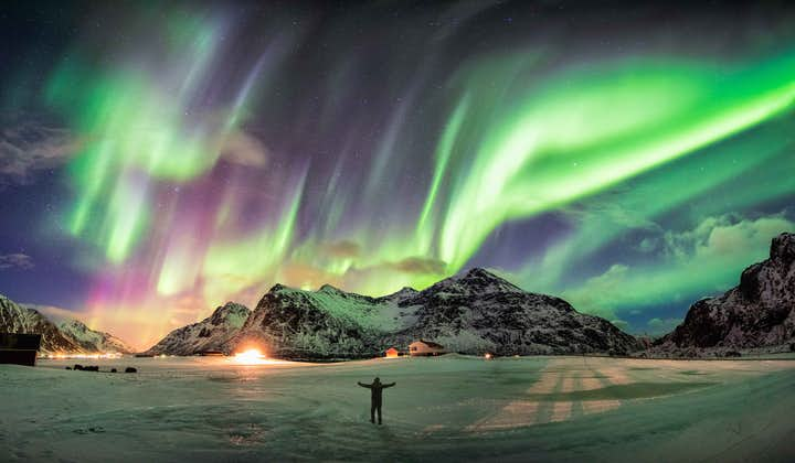 A man joyously marveling at the northern lights