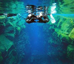สนอร์เกิ้ล ระหว่างสองทวีป | ถ่ายรูปใต้น้ำฟรี