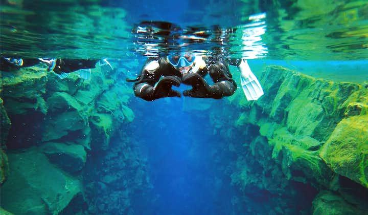 Snorkling mellom kontinenter i Silfra   Gratis undervannsbilder