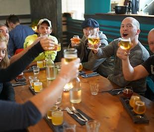 Reykjavik Beer & Schnapps Tour