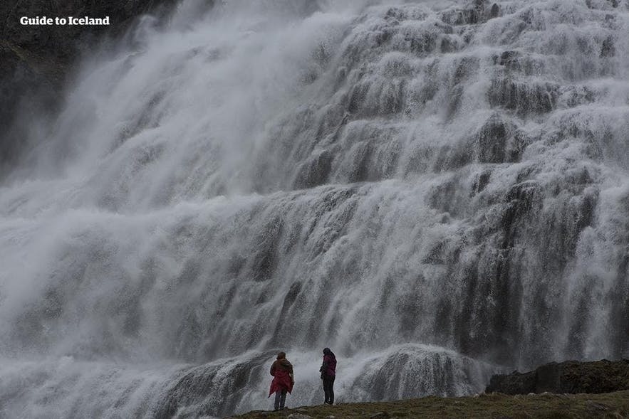 Two people at the bottom of Dynjandi waterfall