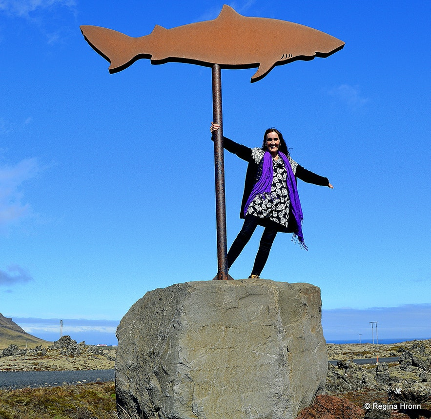 Regína by the shark sign showing the way to theShark museum on the north side of Snæfellsnes peninsula at Bjarnarhöfn