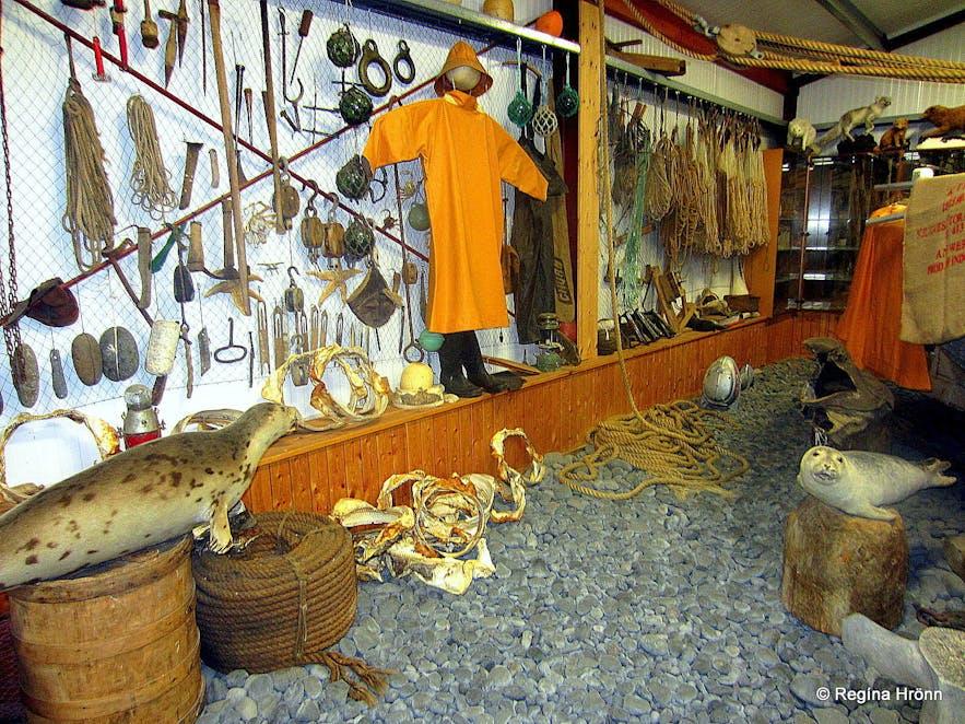 Inside the Shark Museum Snæfellsnes
