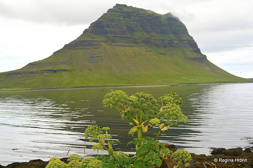 Kirkjufell mountain in Grundarfjörður on Snæfellsnes peninsula, west Iceland
