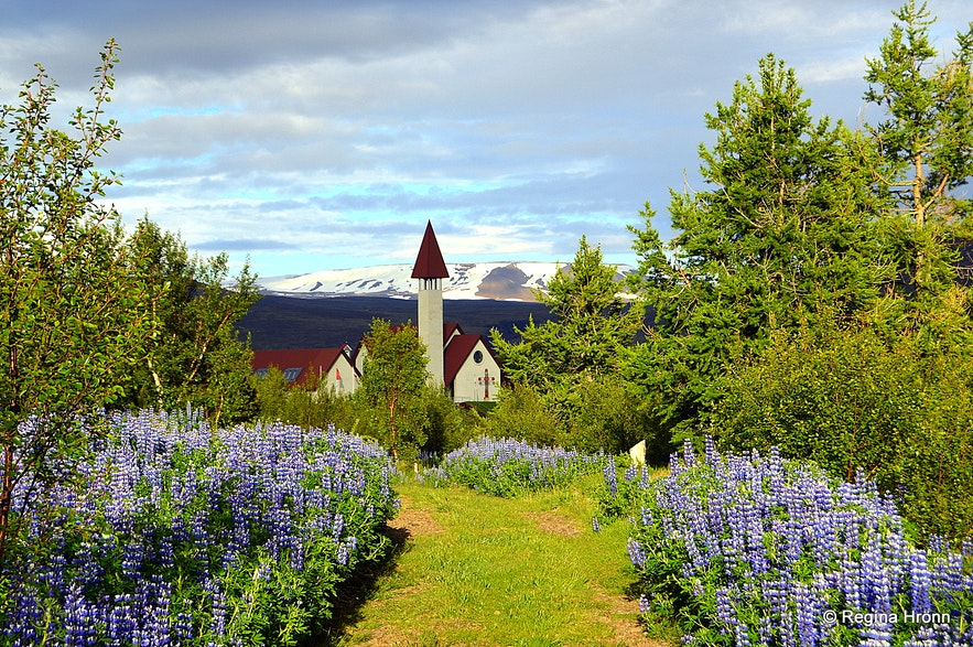 Beautiful Reykholt in the summertime