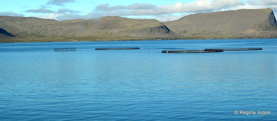 The friendly Hotel West in Patreksfjörður Village in the Westfjords of Iceland