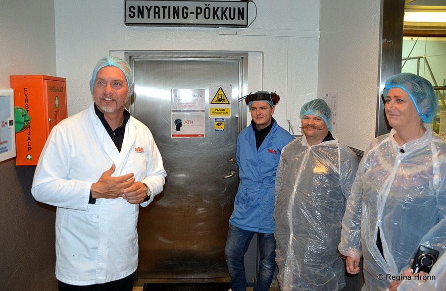 A guided visit to the fish processing factory in Patreksfjörður