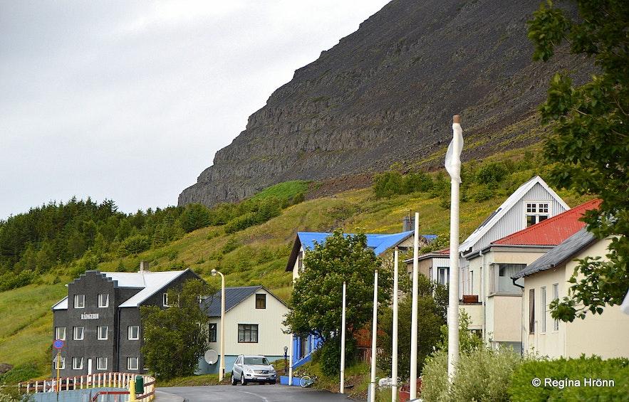 Patreksfjörður village and Ráðagerði