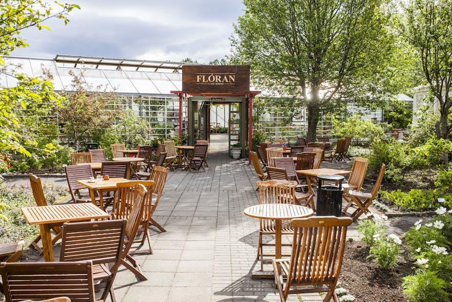 雷克雅未克植物园里的餐厅Cafe Floran
