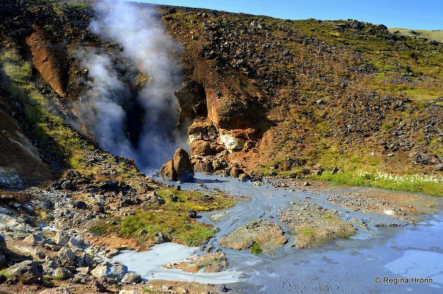 Nesjavellir geothermal area