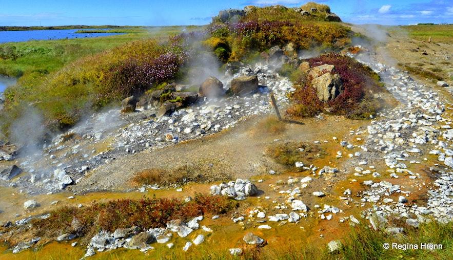Eynireykir hot spring at Reykhólar Westfjords