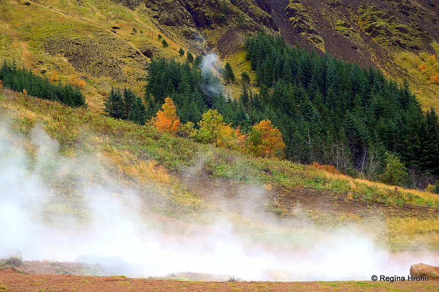 The geothermal area above Hveragerði