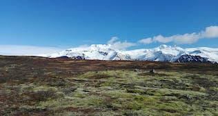 Öræfajökull_moss_Öræfi_glacier_volcano_southeast_summer_free stock.jpg