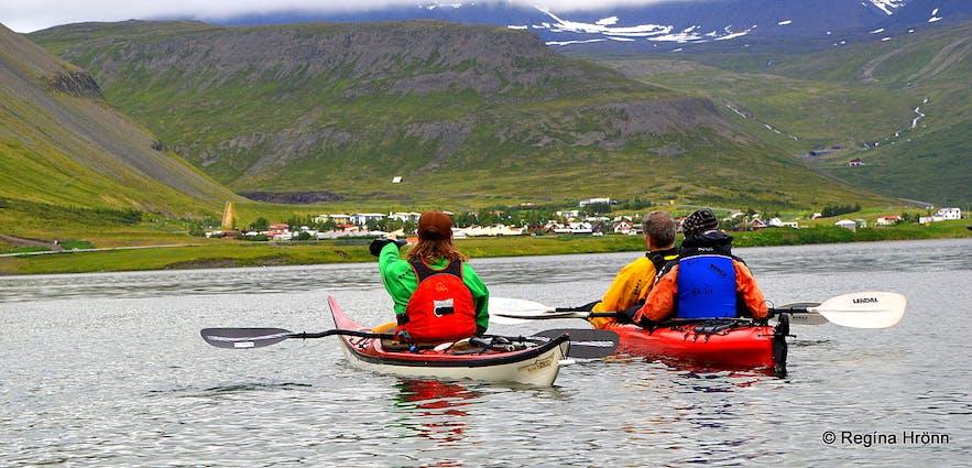 Calm water kayaking in Skutulsfjörður Westfjords