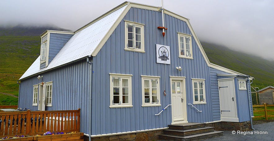 Melrakkasetur - the Arctic Fox Centre at Súðavík