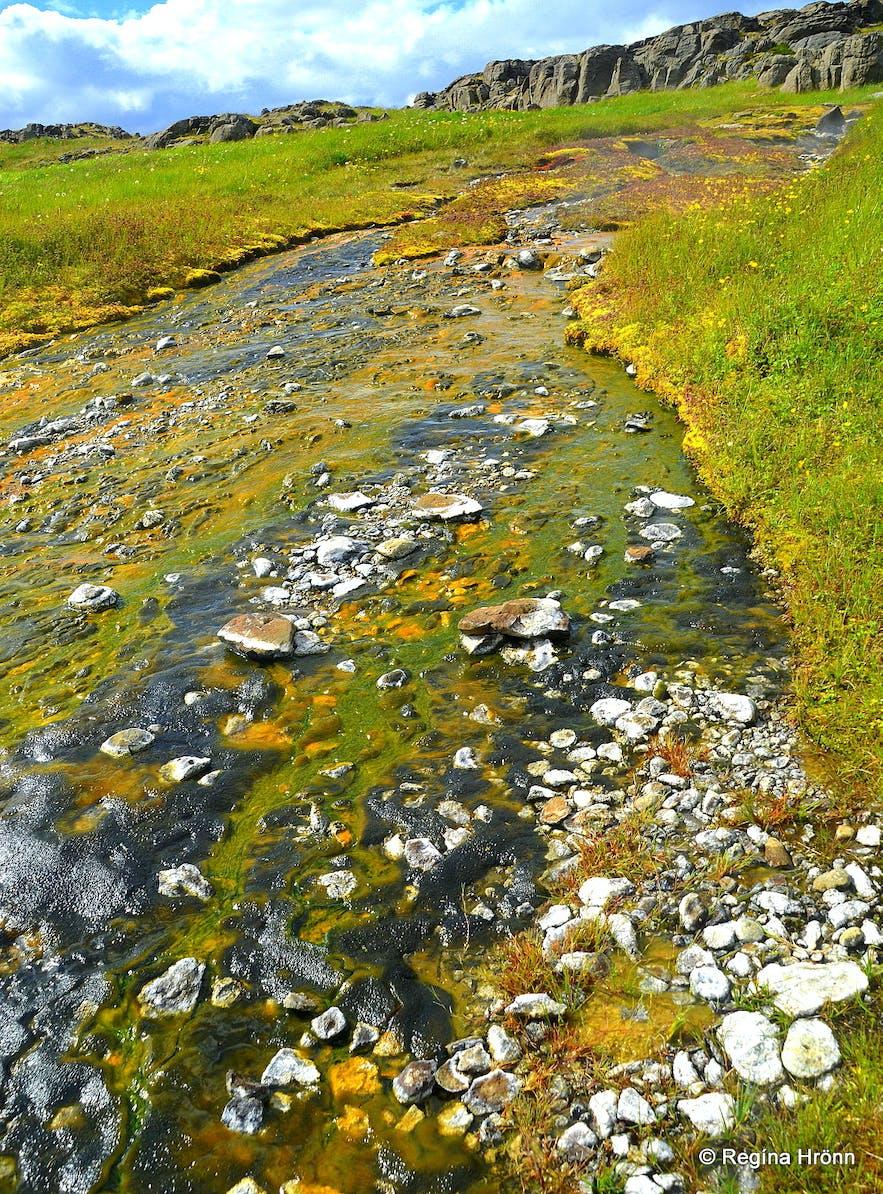 The geothermal area at Reykjanes and Kolahver hot spring Westfjords