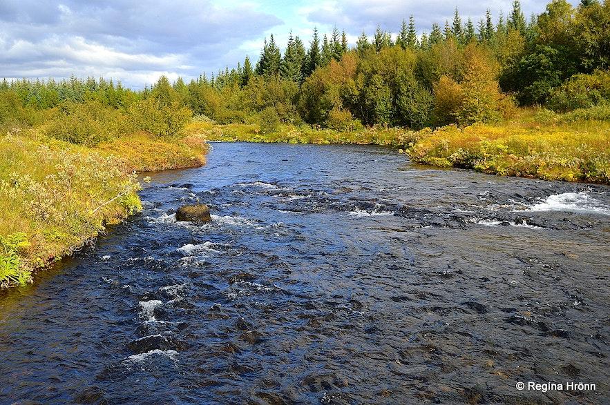 Beiná river in Haukadalsskógur forest in South-Iceland