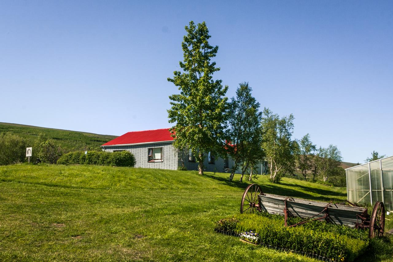 Rjupa Guesthouse is located in rural north Iceland.