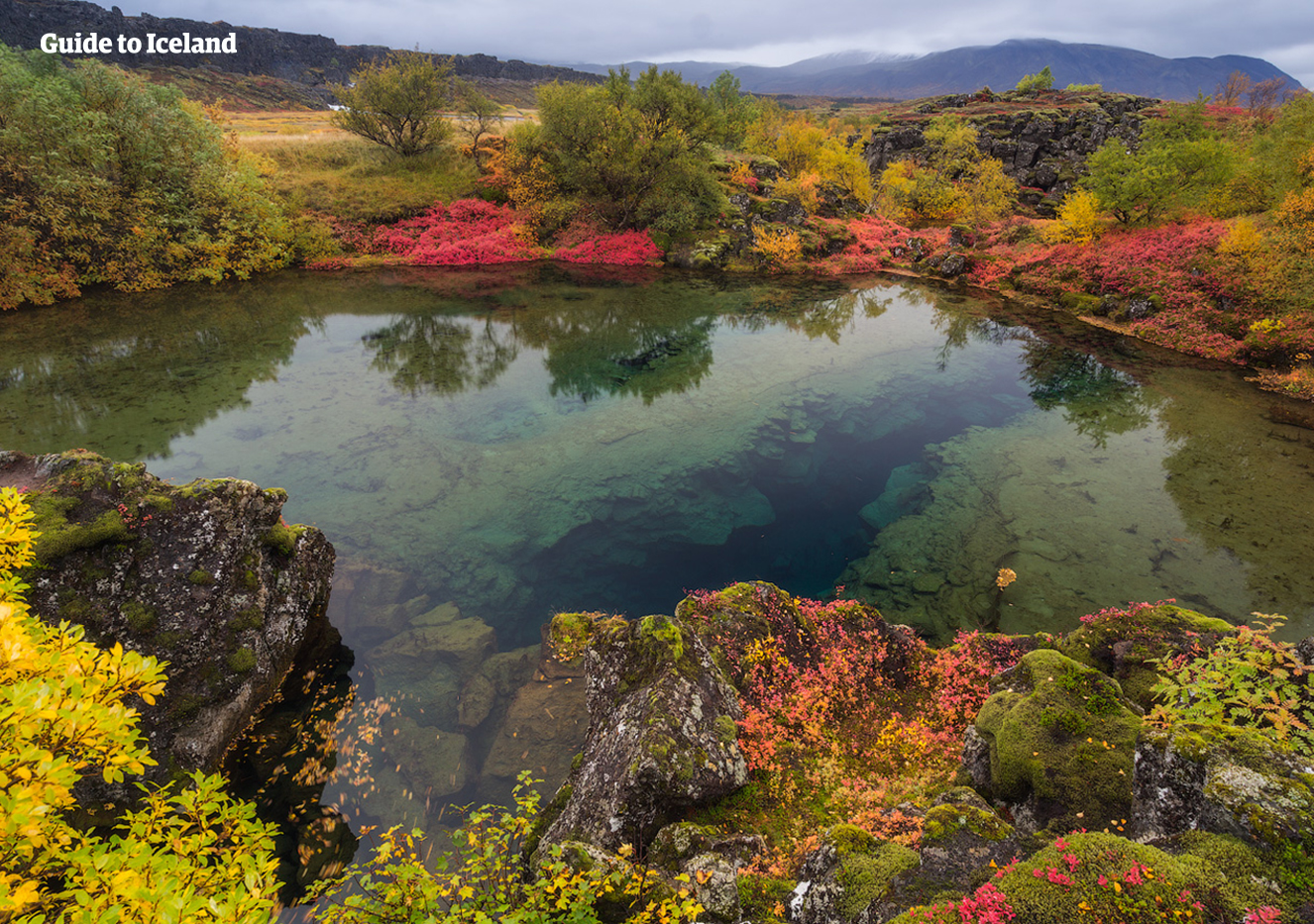 The clear waters of the Silfra Fissure in Thingvellir National Park on the Golden Circle Tourist Route of Iceland.