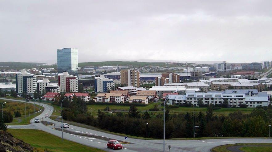 冰岛首都大雷克雅未克地区的科帕沃于尔