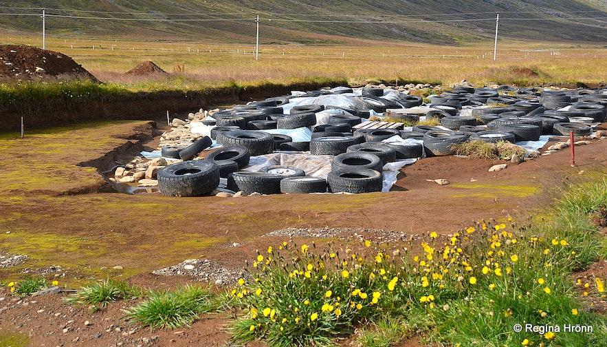 Archaeological excavations at Stöð East-Iceland