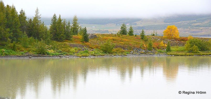 Fall at Lagarfljót