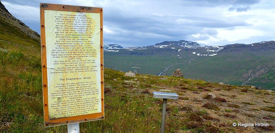 Völvuleiðið á Hólmaheiði - burial mound in East-Iceland