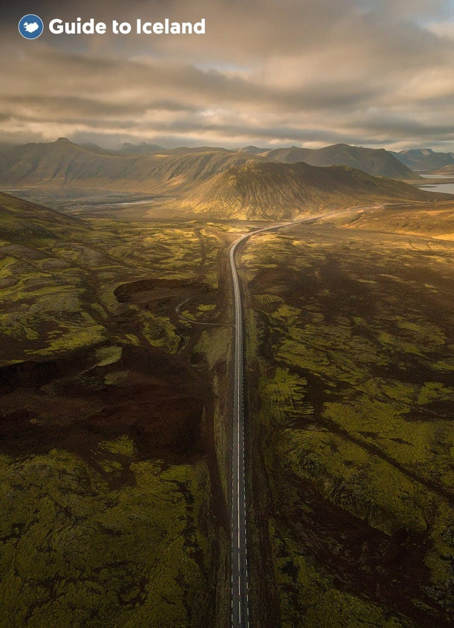 A road slices through a lava field to the coast in Iceland.